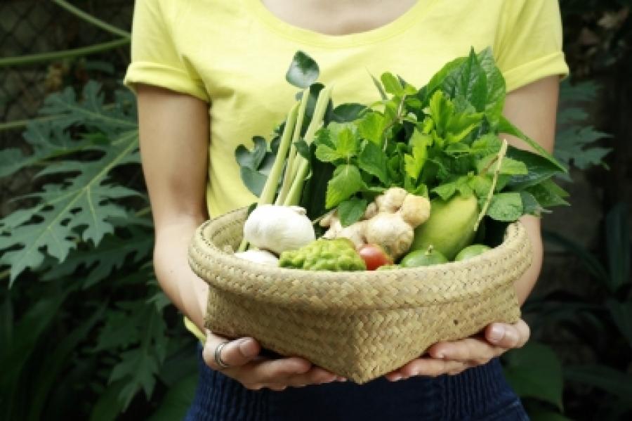 Αυτές είναι οι λύσεις για σένα αρχάριε κηπουρέ!