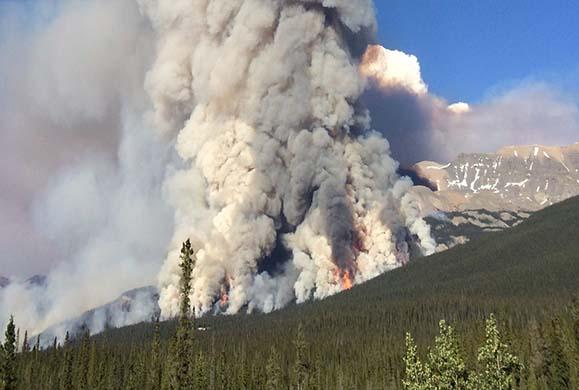 Οι δασικές πυρκαγιές βοηθούν στην ψύξη του πλανήτη;