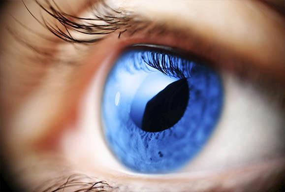 5+1 τρόφιμα που θα σας βοηθήσουν να προστατεύσετε την υγεία των ματιών σας
