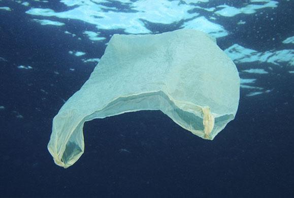 Η ιστορία της πλαστικής σακούλας και η μόλυνση που προκαλεί