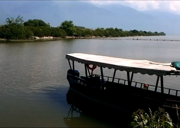 Ταξιδεύοντας στον υδροβιότοπο την λίμνης Κερκίνης - Σερρών