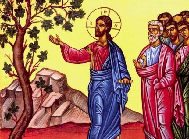 Γιατί ο Χριστός καταράστηκε τη συκιά;