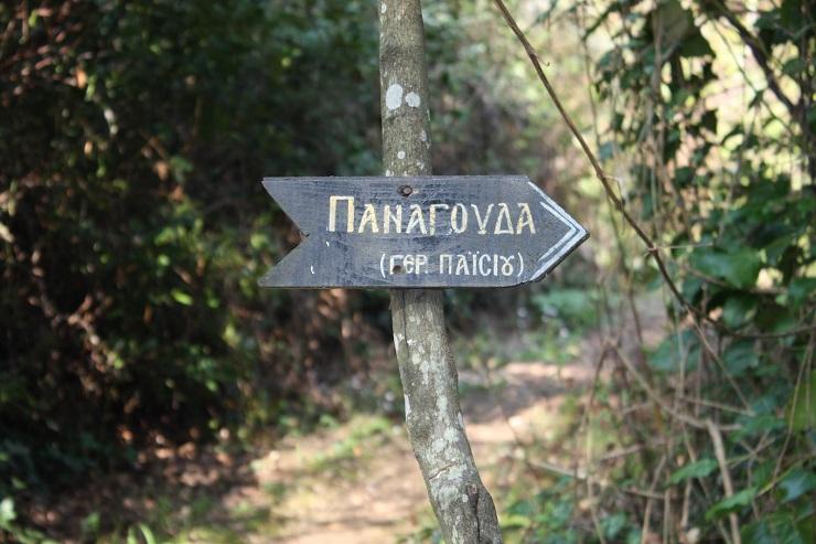 Τι λέει πνευματικό τέκνο του Αγίου Παϊσίου για την Σύνοδο της Κρήτης