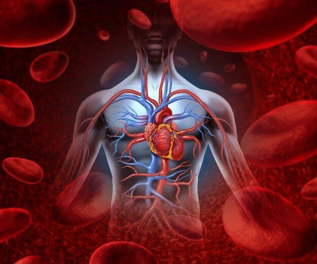 Eκπληκτικό: Καθαρίστε αρτηρίες, καρδιά και νεφρά σε 72 ώρες με φυσικό τρόπο