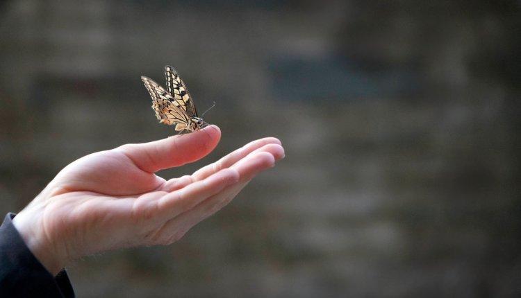 Τι πρέπει να κάνει ο χριστιανός για να κληρονομήσει την αιώνια ζωή