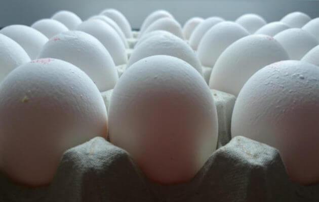 Συλλήψεις για το σκάνδαλο με τα μολυσμένα αυγά στην ΕΕ